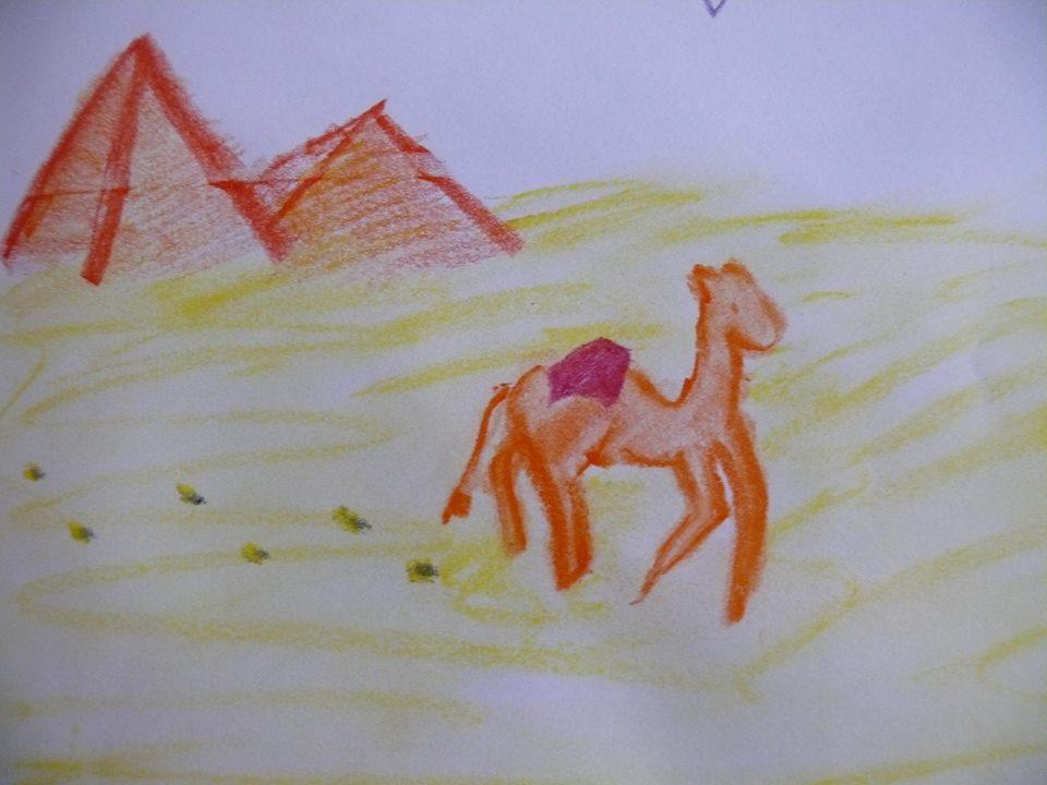 velbloud před pyramidami